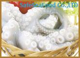 Pould Squid